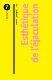 Couv_Esthetique_site_large