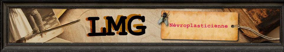 Capture lmg