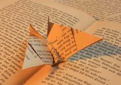 book-58444_640
